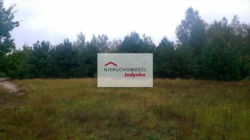 Działka inwestycyjna na sprzedaż Sulejówek, Szkopówka  9700m2 Foto 3