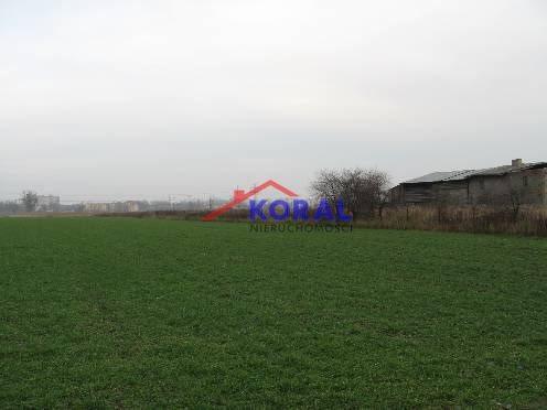 Działka rolna na sprzedaż Wrocław, Psie Pole, Kowale, Kowalska  9898m2 Foto 2
