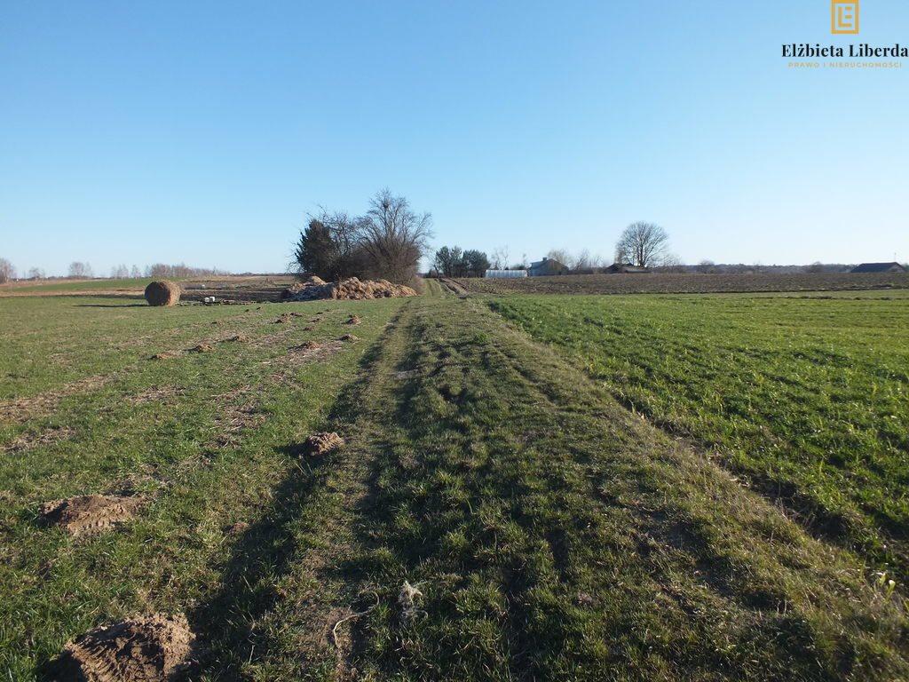 Działka rolna na sprzedaż Uniszowice  7400m2 Foto 5