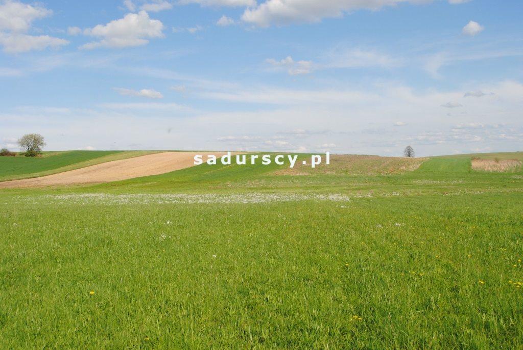 Działka rolna na sprzedaż Ściborzyce  34334m2 Foto 2