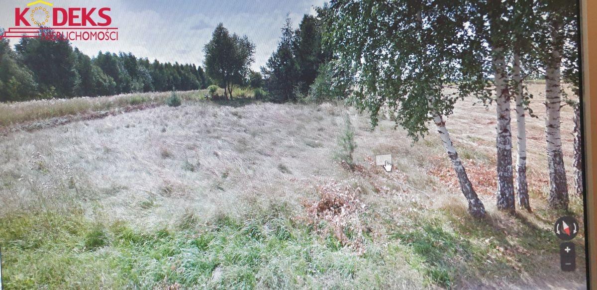 Działka budowlana na sprzedaż Borowa Góra  1000m2 Foto 1
