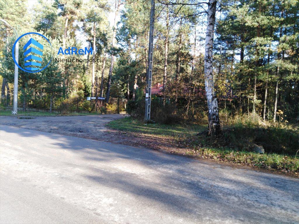 Działka leśna na sprzedaż Jeziórko, Świerkowa  5000m2 Foto 6