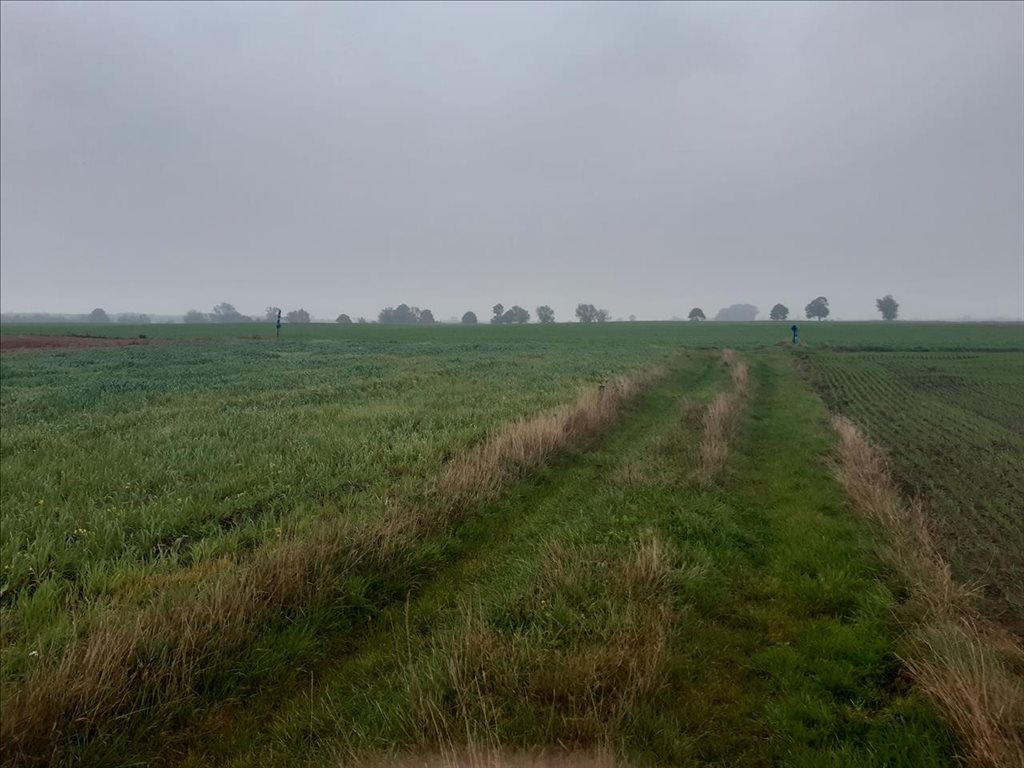 Działka rolna na sprzedaż Mielenko, Mielno  3020m2 Foto 9