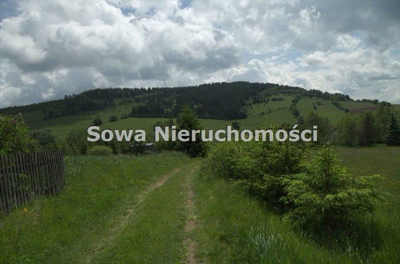 Działka budowlana na sprzedaż Sierpnica  1000m2 Foto 10