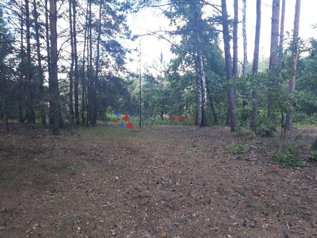 Działka leśna z prawem budowy na sprzedaż Jeziórko  1070m2 Foto 3