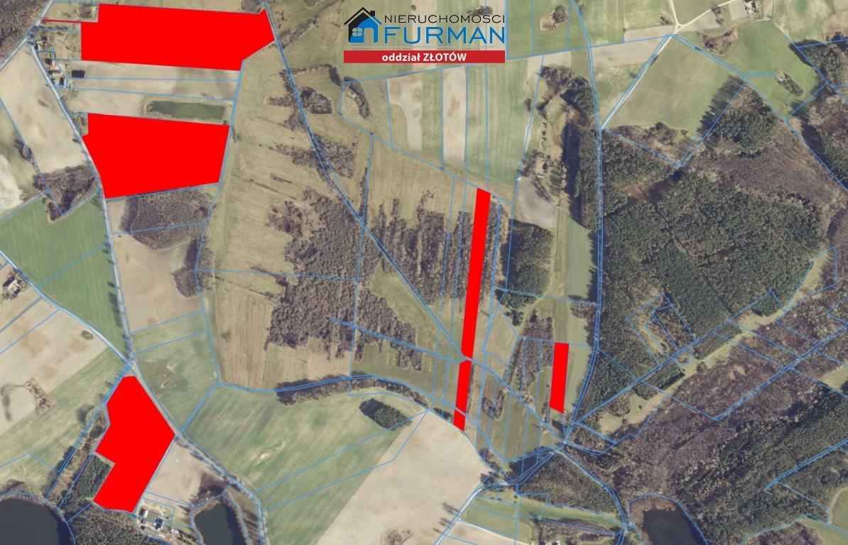 Działka rolna na sprzedaż Witrogoszcz-Kolonia  183634m2 Foto 2