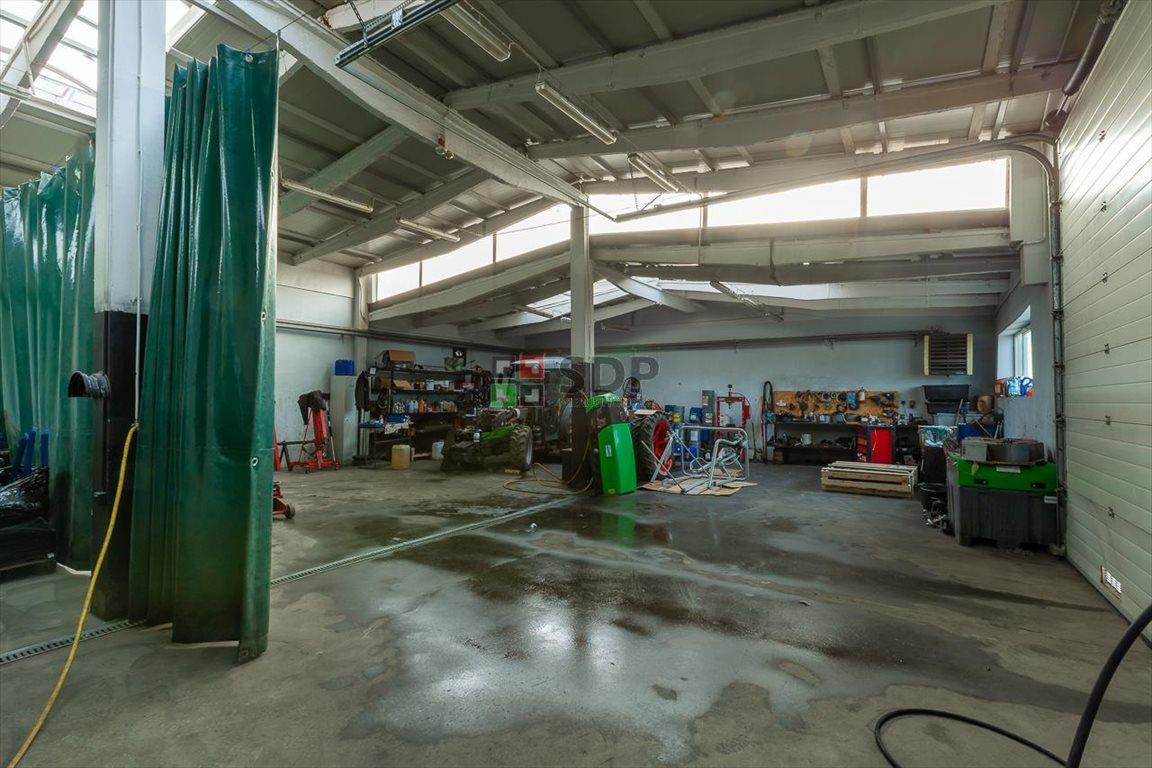 Działka inwestycyjna na sprzedaż Budziszów Wielki  9276m2 Foto 13