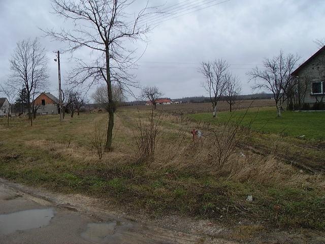 Działka inna na sprzedaż Jastrzębnik  10489m2 Foto 2