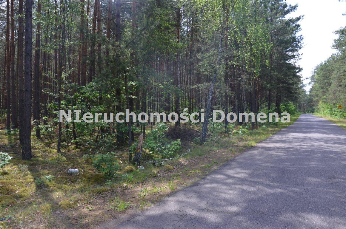 Działka leśna na sprzedaż Poświętne  11400m2 Foto 2