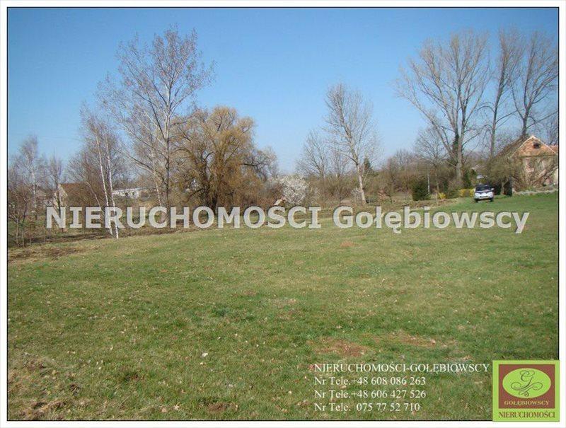 Działka inna na sprzedaż Jędrzychowice  3952m2 Foto 1