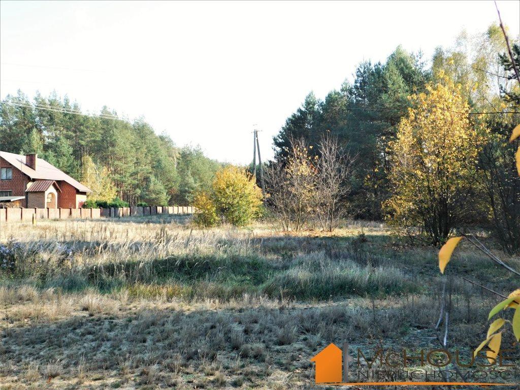 Działka rolna na sprzedaż Huta Komorowska, Huta Komorowska  5350m2 Foto 2