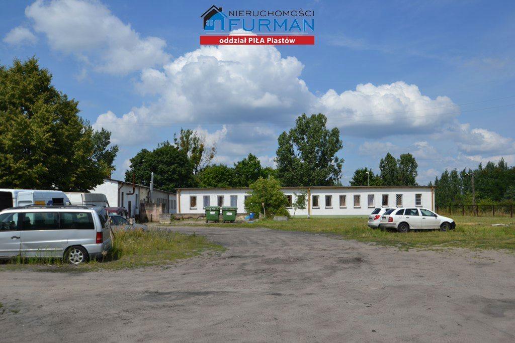 Lokal użytkowy na sprzedaż Piła, Staszyce  3210m2 Foto 10
