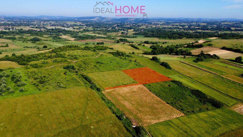 Działka rolna na sprzedaż Lipinki  13788m2 Foto 2