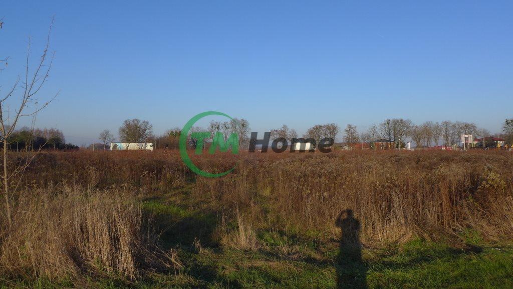 Działka inwestycyjna na sprzedaż Topołowa  50000m2 Foto 7