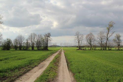 Działka rolna na sprzedaż Smolęcin  3008m2 Foto 1
