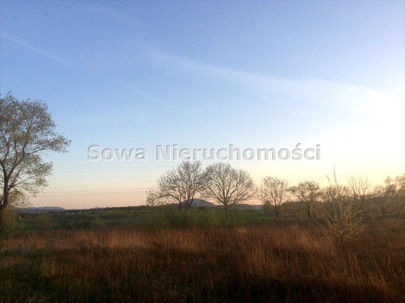 Działka budowlana na sprzedaż Świebodzice, ok. 5 km od Świebodzic  984m2 Foto 4