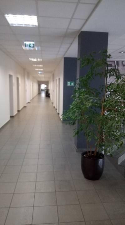 Lokal użytkowy na wynajem Gliwice, Śródmieście, OKOLICA PLACU GRUNWALDZKIEGO  50m2 Foto 5