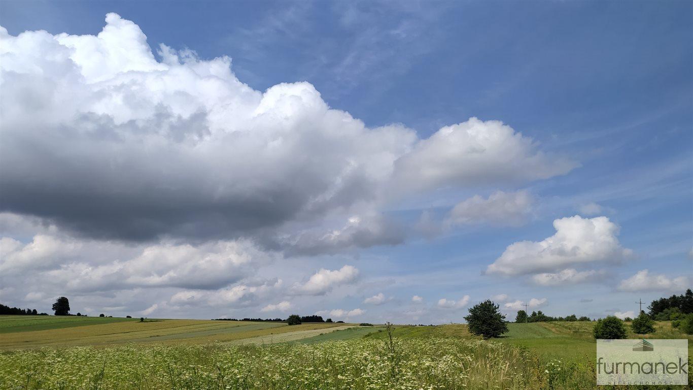 Działka rolna na sprzedaż Stanisławów  16962m2 Foto 4