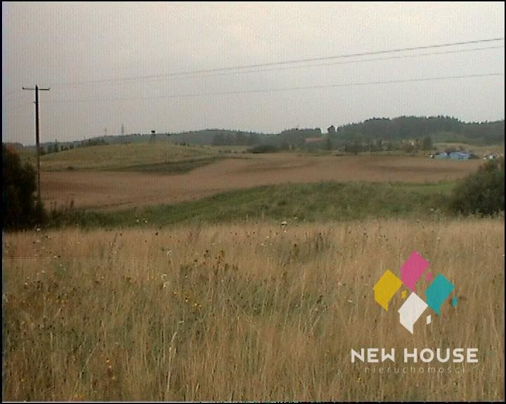 Działka rolna na sprzedaż Szałstry  6200m2 Foto 11