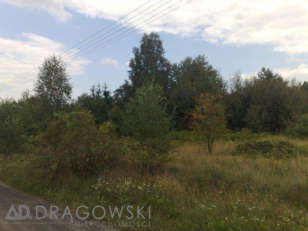 Działka budowlana na sprzedaż Kędzierówka  13500m2 Foto 2
