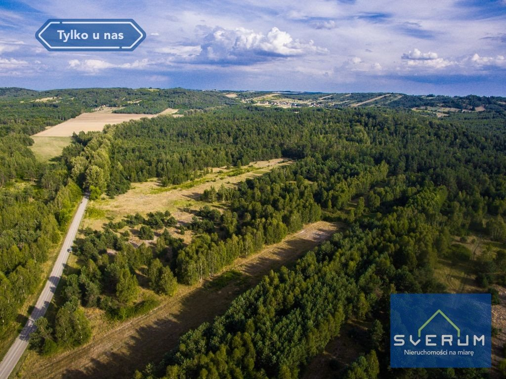 Działka leśna na sprzedaż Złoty Potok, Partyzantów  7420m2 Foto 4