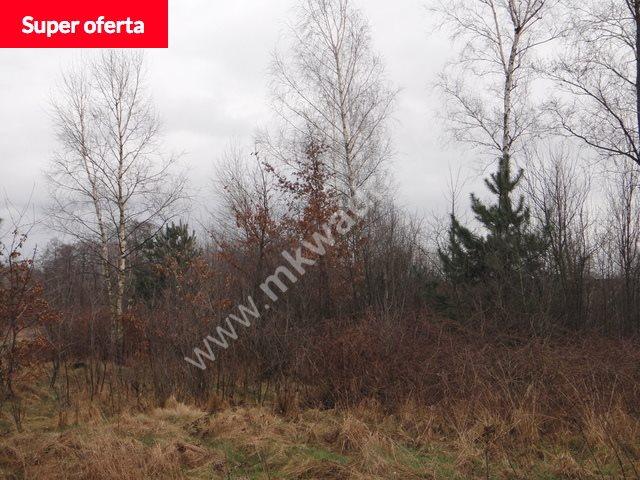 Działka inwestycyjna na sprzedaż Grodzisk Mazowiecki  10800m2 Foto 1