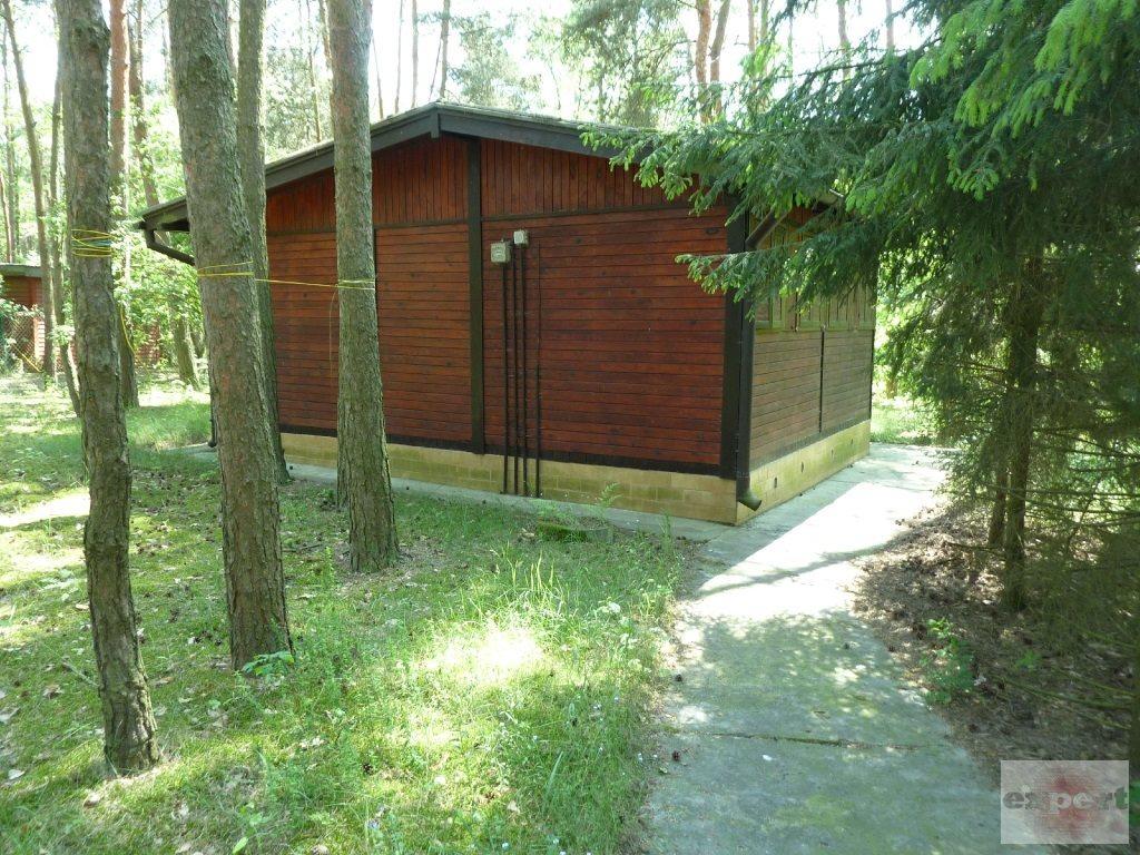 Dom na sprzedaż Bechcice-Kolonia  20m2 Foto 3