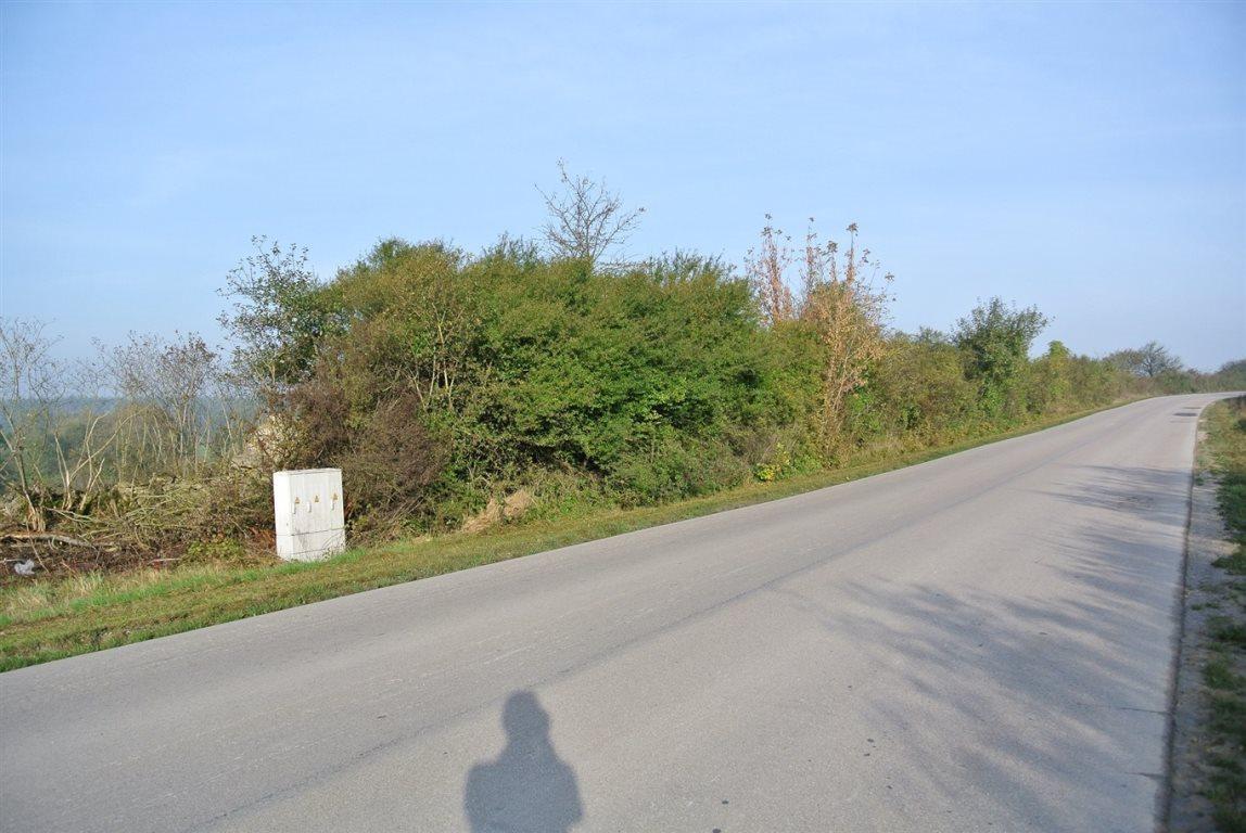 Działka budowlana na sprzedaż Sobków  29092m2 Foto 7