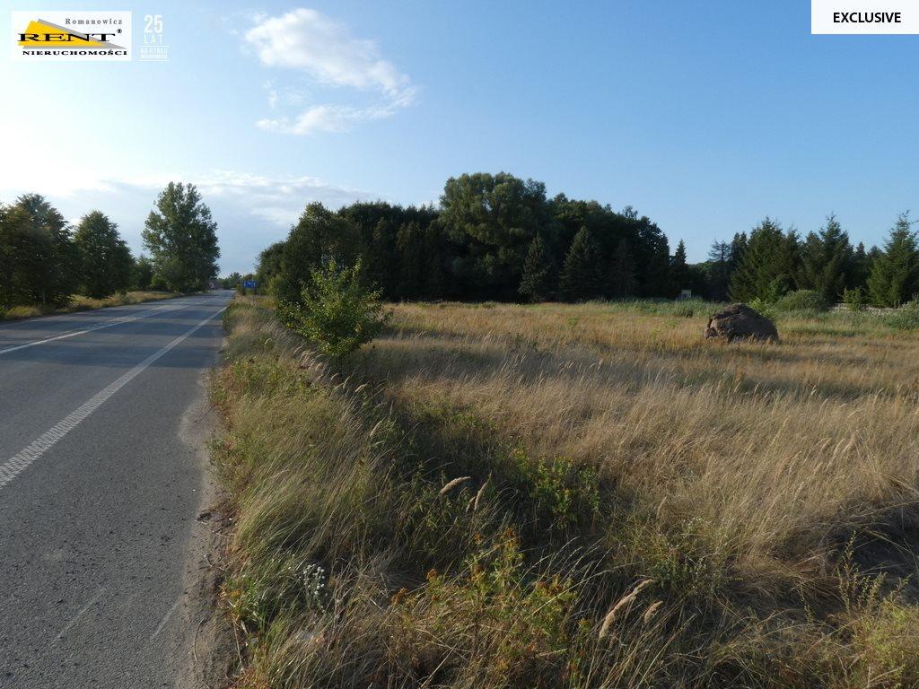Działka siedliskowa na sprzedaż Ostromice  3160m2 Foto 3