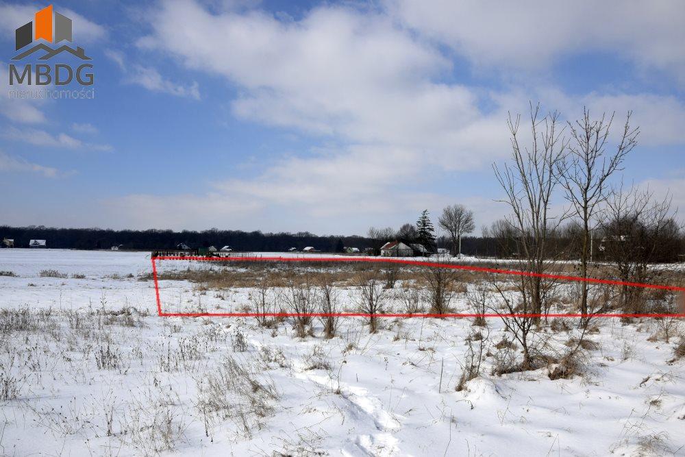 Działka rolna na sprzedaż Zabierzów Bocheński  3800m2 Foto 2