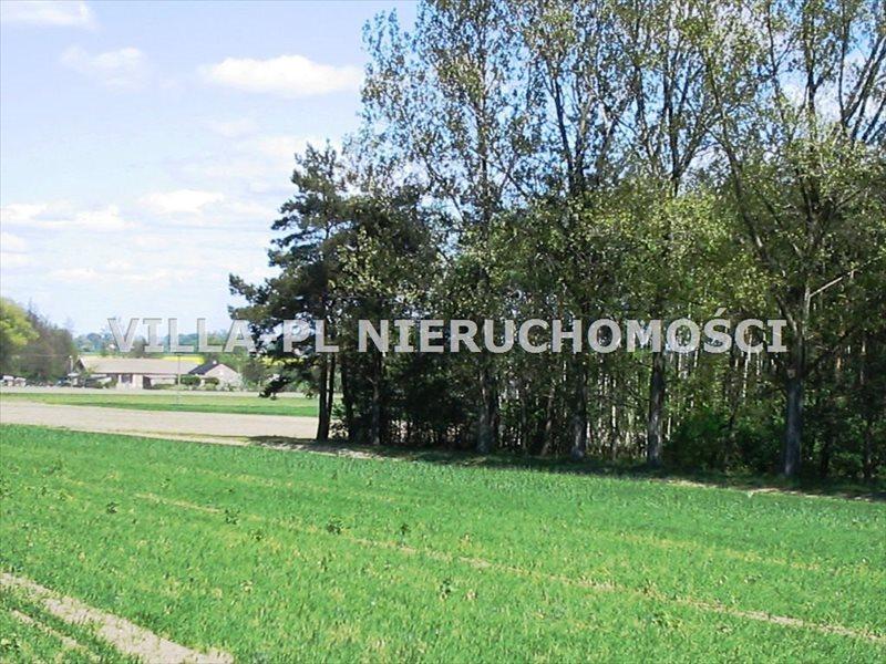 Działka leśna na sprzedaż Łęczyca  44780m2 Foto 2