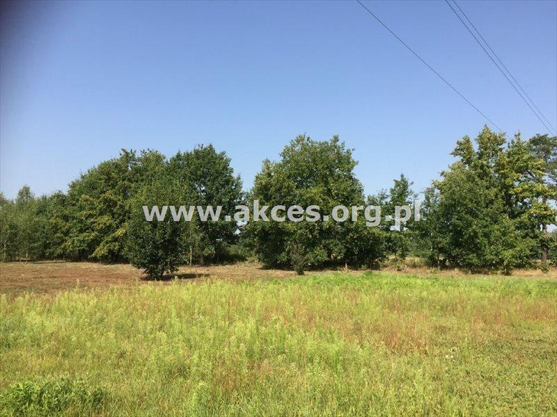 Działka rolna na sprzedaż Zawodne  1200m2 Foto 3