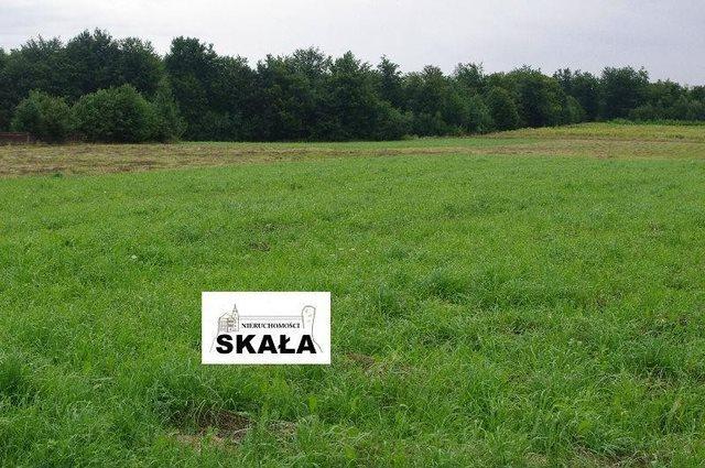 Działka rolna na sprzedaż Sąspów  5400m2 Foto 2