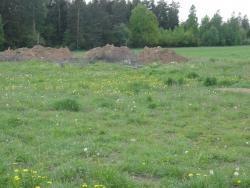 Działka siedliskowa na sprzedaż Świdry-Dobrzyce  6400m2 Foto 2