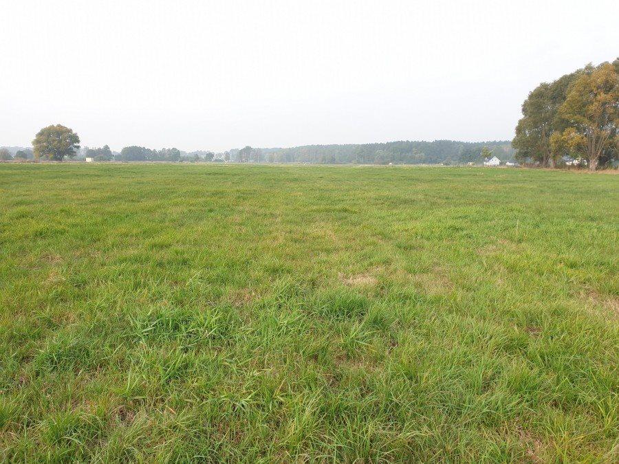 Działka rolna na sprzedaż Dobra, TRASZKI  3350m2 Foto 7