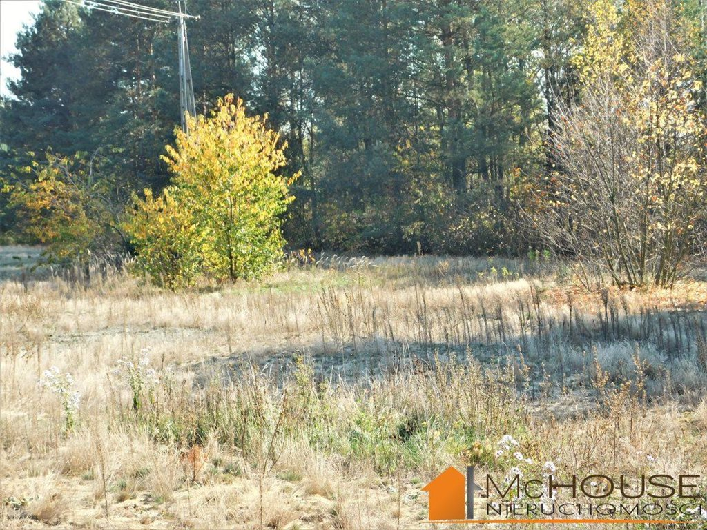 Działka rolna na sprzedaż Huta Komorowska, Huta Komorowska  5350m2 Foto 9