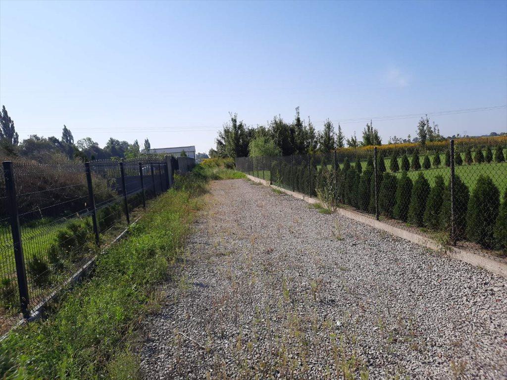 Działka siedliskowa na sprzedaż Wilkowa Wieś  4033m2 Foto 3