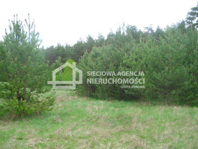 Działka siedliskowa na sprzedaż Miedzno  4564m2 Foto 9