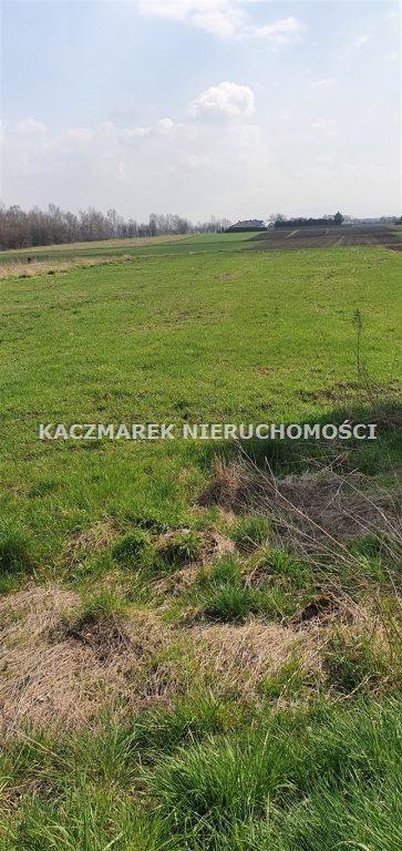 Działka budowlana na sprzedaż Jankowice, Żubrów  5273m2 Foto 6