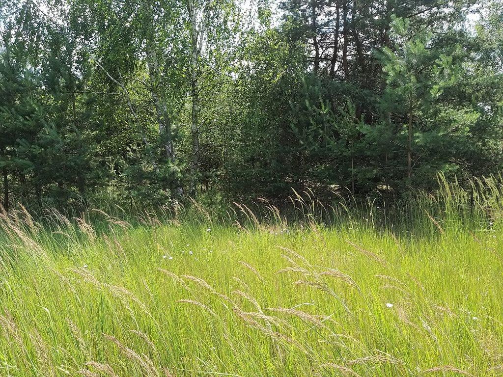 Działka budowlana na sprzedaż Karczewo  2078m2 Foto 1