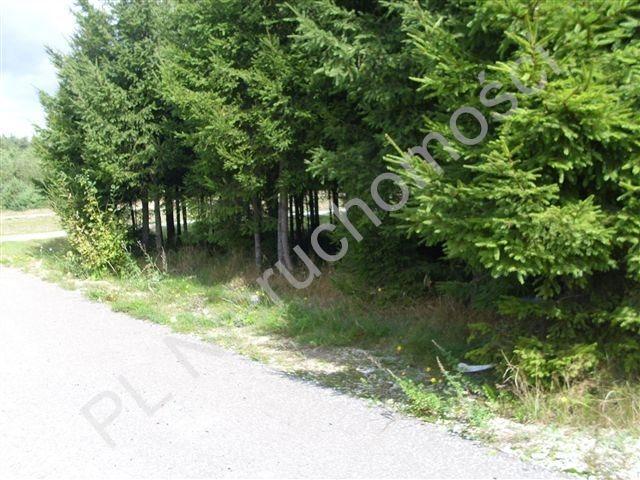 Działka rolna na sprzedaż Mszczonów  4015m2 Foto 9