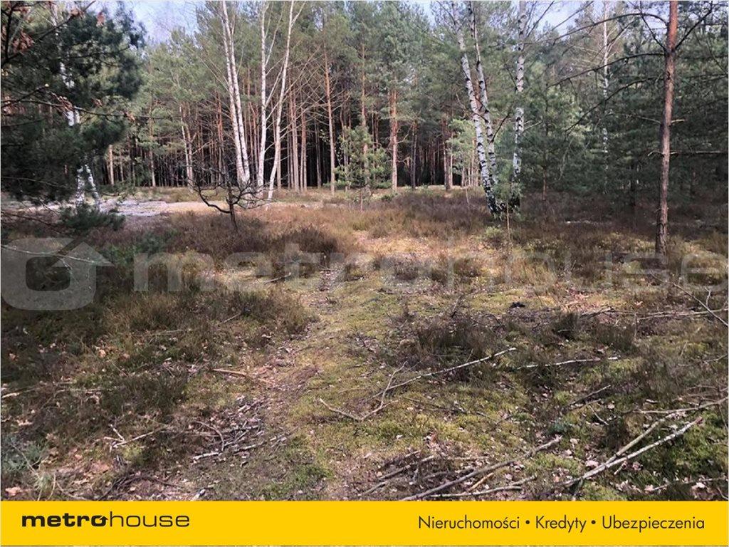 Działka leśna na sprzedaż Józefów, Józefów  2635m2 Foto 3