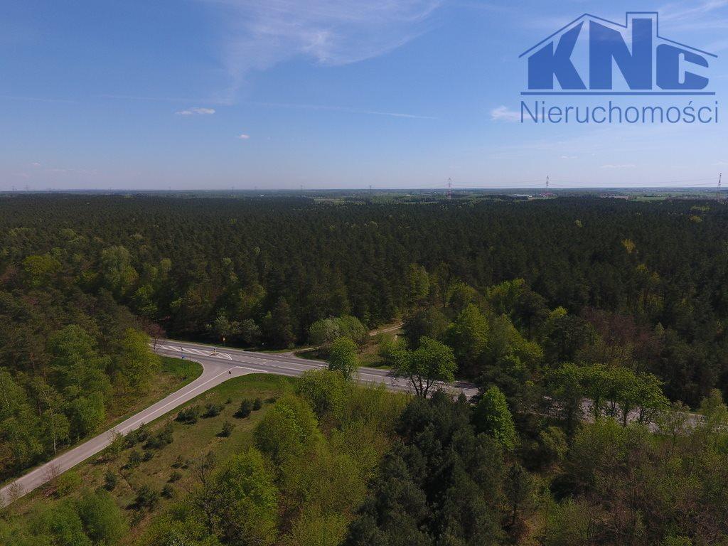 Działka leśna na sprzedaż Laskowiec  2700m2 Foto 3