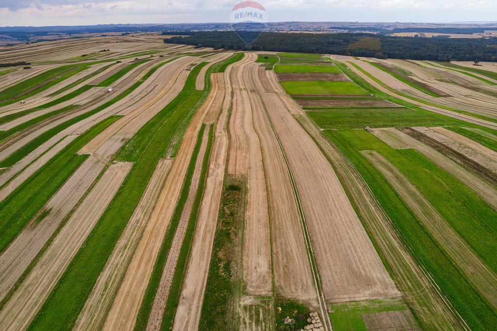Działka rolna na sprzedaż Sułoszowa  14190m2 Foto 5