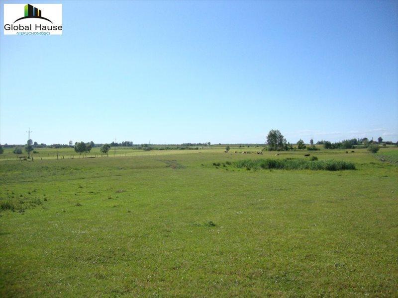 Działka rolna na sprzedaż Prawdziska  6500m2 Foto 1