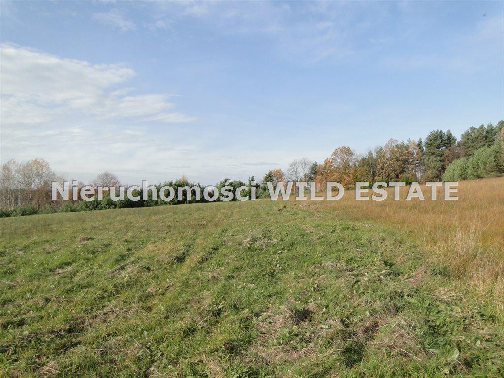Działka rolna na sprzedaż Solina, Berezka  10398m2 Foto 9