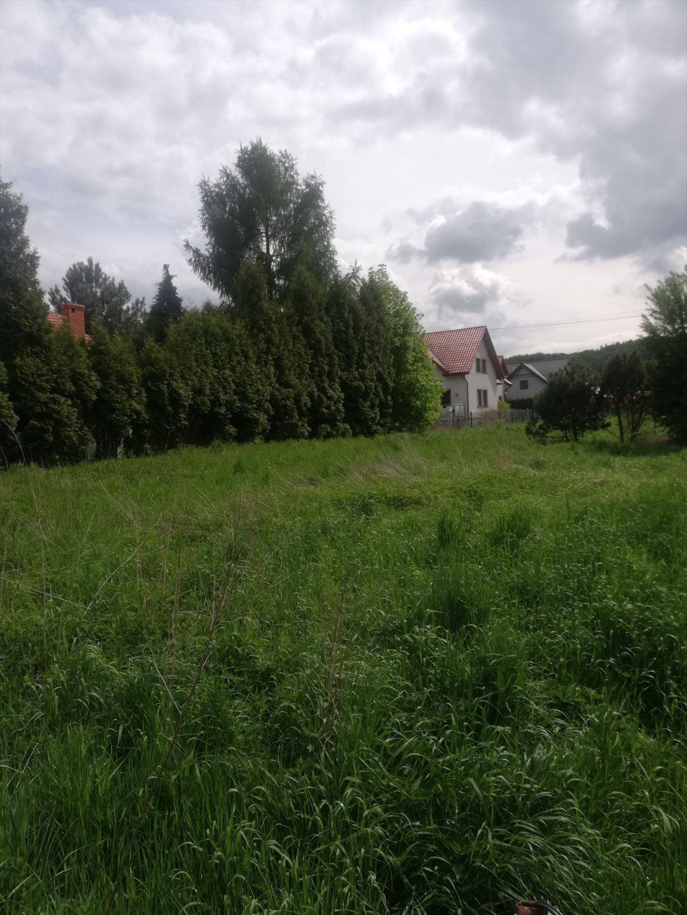 Działka budowlana na sprzedaż Kraków, Krowodrza, Królowej Jadwigi  1000m2 Foto 1