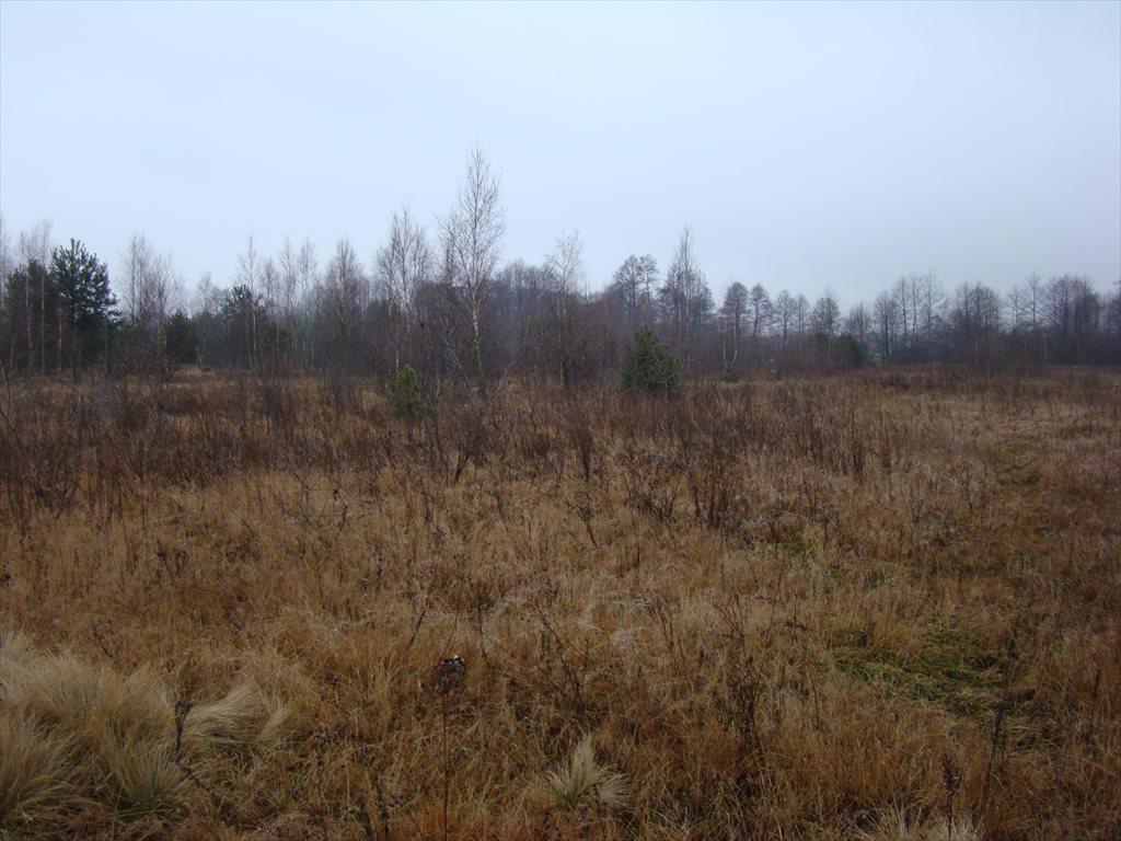 Działka siedliskowa na sprzedaż Tomaszew, okolice Żyrardowa, okolice Żyrardowa  16200m2 Foto 3