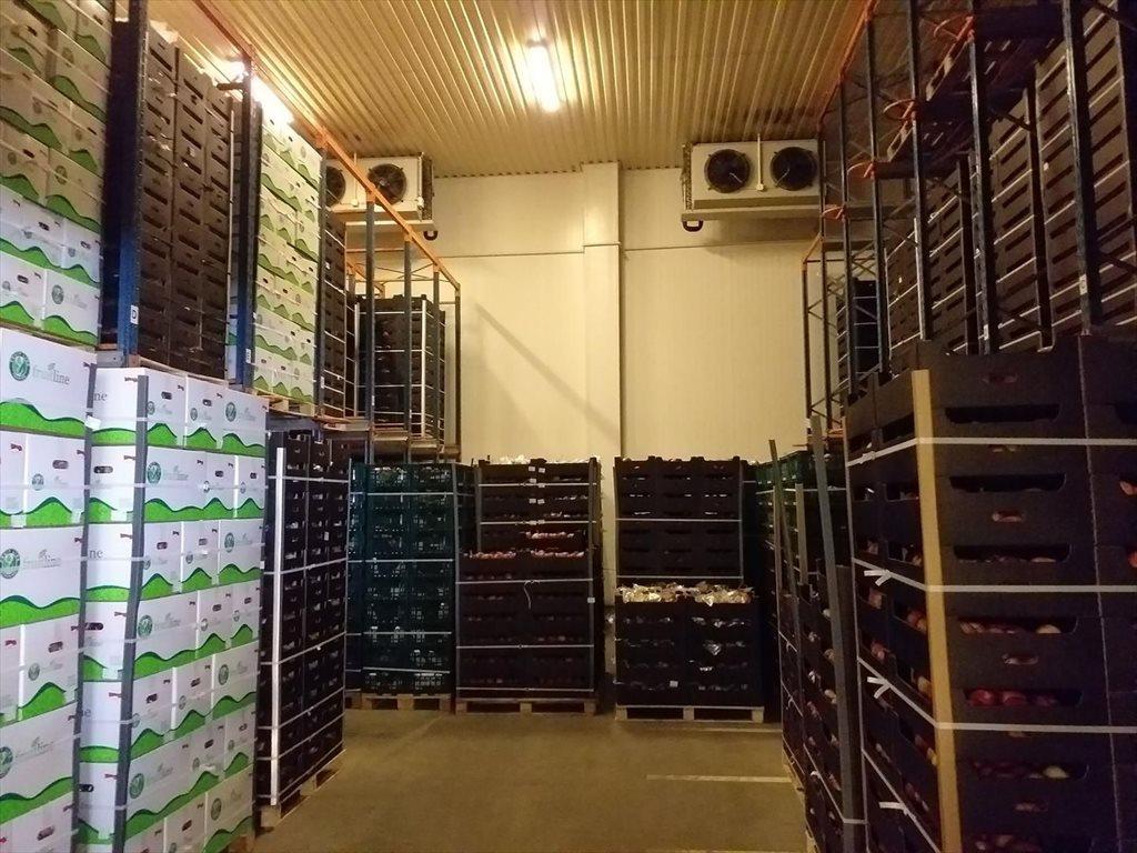 Lokal użytkowy na sprzedaż Wsola  1800m2 Foto 6