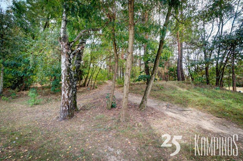Działka leśna na sprzedaż Hornówek, Izabelin, oferta 2670  4534m2 Foto 4